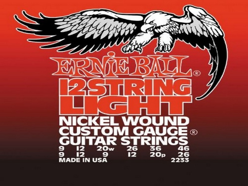 Ernie Ball 2233 12 string Nickel Wound | Struny - 1