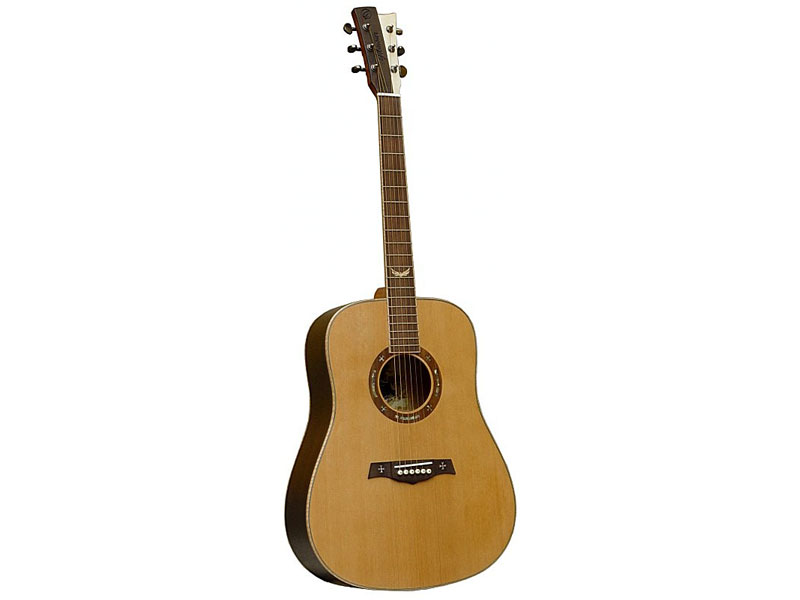 GILMOUR Robust | Dreadnought - 1