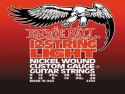 Ernie Ball 2233 12 string Nickel Wound | Struny