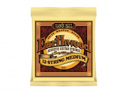 ERNIE BALL 2012 Earthwood 12string - medium 011-052